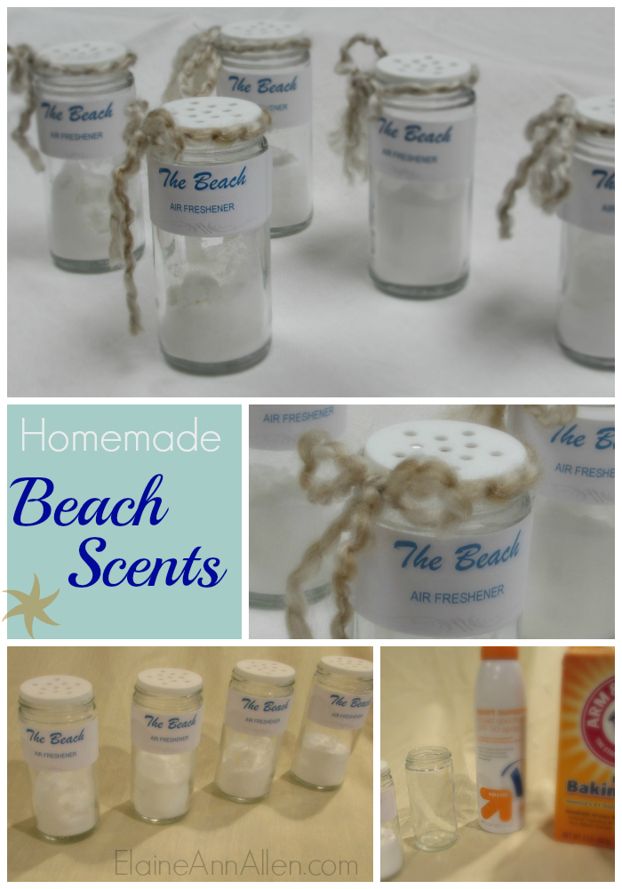 """Beach"" Scented Air Fresheners!"